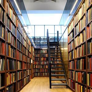 Библиотеки Одоева