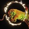 Цирки в Одоеве